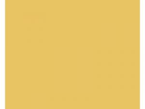BD-2015-Logos-4x3_0024_SNAPBOOTH-RENTALS