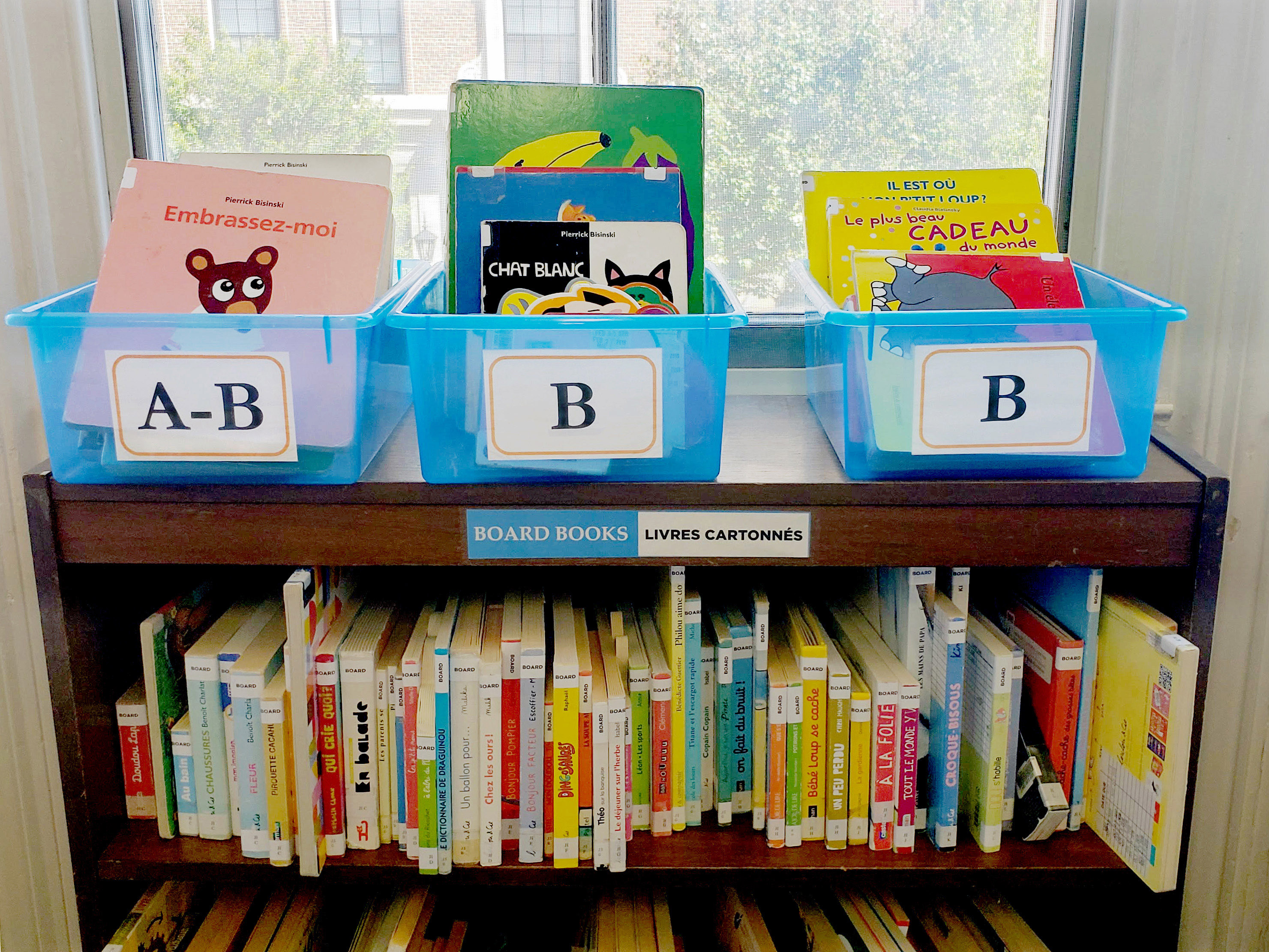 Board book shelves by the window
